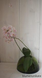 orchideen-liebe-eins