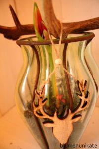 amaryllisliebezwei